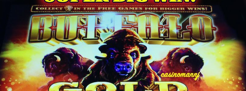**NEW** — BUFFALO GOLD SLOT — SUPER BIG WIN!! — Slot Machine Bonus