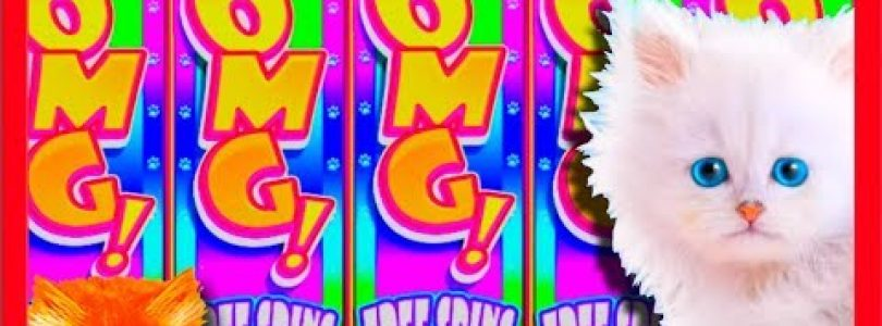 OMG! BIG WINS! Just Bonuses on OMG! Kittens and OMG! Puppies Slot Machines With SDGuy1234