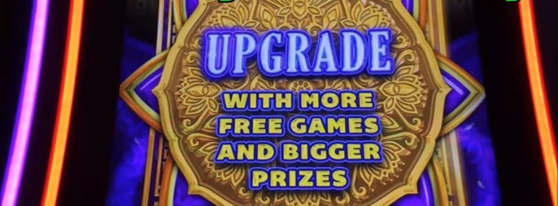 ★BIG WIN ? FREE PLAY Slot Live ! How was result on FP☆Thunder Cash / 8 Petals & more (5 Slots) ☆彡栗スロ