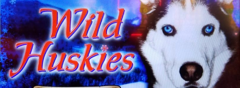 TOO MANY FREE GAMES!  BIG WIN on WILD HUSKIES + MORE CHILLI SLOT MACHINE POKIES BONUSES!