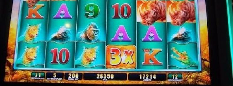 Raging Rhino Week — 1/3 — MAX BET & BIG WIN Slot Machine Bonus Round Free Games + MASSIVE RETRIGGERS