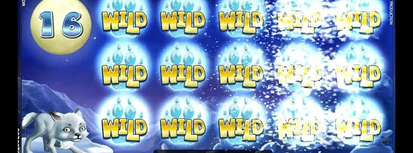 FULL WILDS! WOLF CUB SLOT BIG WIN NetEnt. Casino SlotsMagic