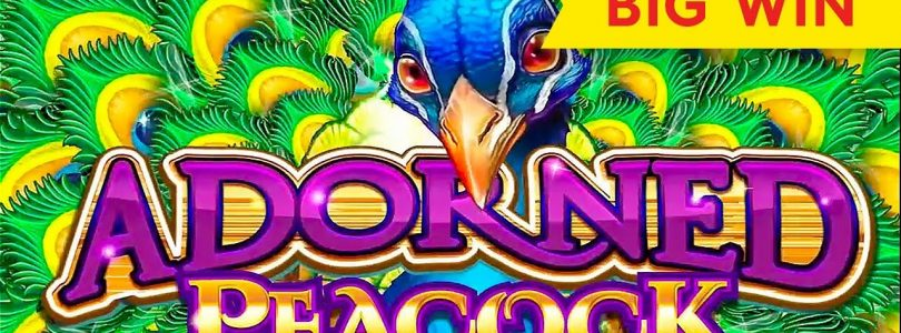Adorned Peacock Slot — BIG WIN SESSION, NICE!