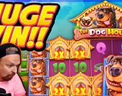 HUGE WIN!!! Dog House BIG WIN!! Casino Games from CasinoDaddy Live Stream