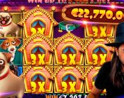 ROSHTEIN Huge Win on Dog House slot — Top 5 Biggest Wins of week