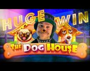 DOG HOUSE BIG WIN —  Best Casino Clips Vol. 44
