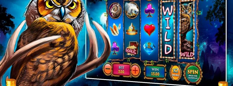 Занос X447 MAGIC OWL Mega big Win Casino Playfortuna