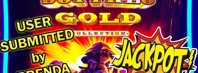 Buffalo Gold BONUS JACKPOT! Brenda's BIG WIN! Slot Ladies