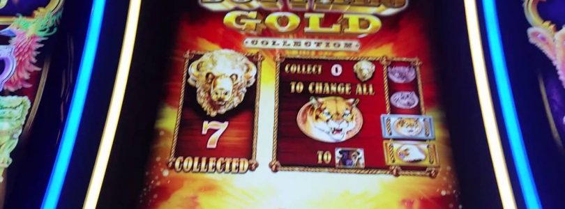 **BIG WIN** BUFFALO GOLD BONUS