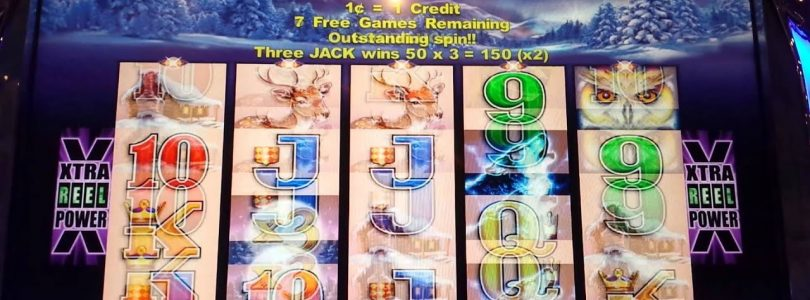 Big win. Max bet on Timber wolf's slot machine
