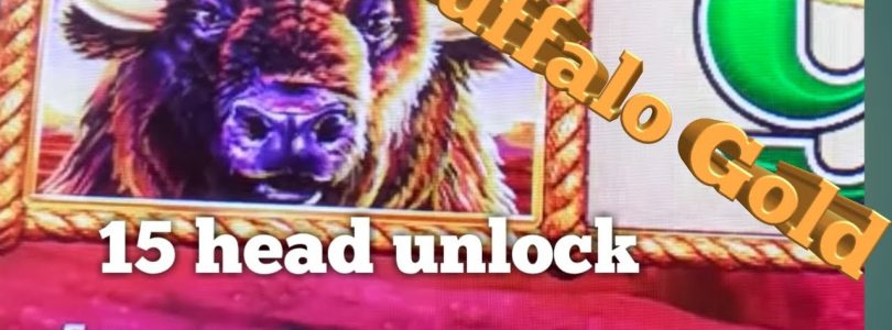 Slot machine-buffalo gold ,15 head unlock , big win , how sweet.