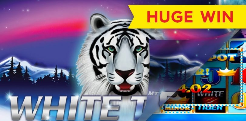 White Tiger Slot — INCREDIBLE SESSION, HUGE WIN — $5 Max Bets!