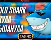 Nice Win Amatic Wild Shark / Лудосик заносы