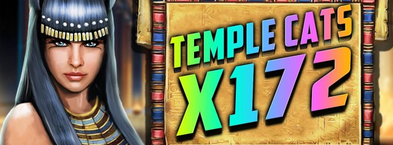 TEMPLE CATS  SLOT BY ENDORPHINA | ONLINE CASINO BIG WIN | 172 X | ARM CASINO заносы