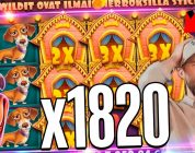 Streamer huge win  on The Dog House slot  —  TOP 5 Biggest wins of the week