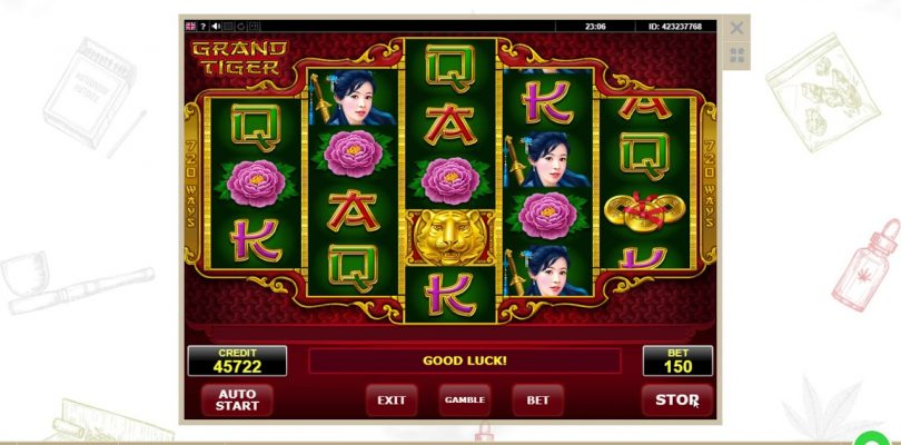 Casino slot   Grand Tiger win 13 eur